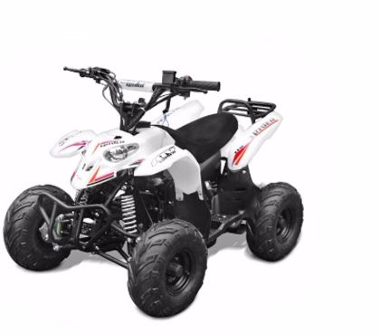Photos Vivastreet Quad enfant spider 110cc blanc