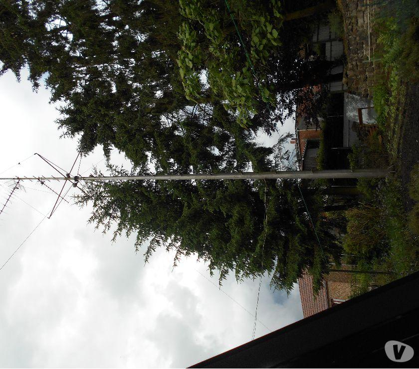 Photos Vivastreet Mât pour antenne ou éclairage