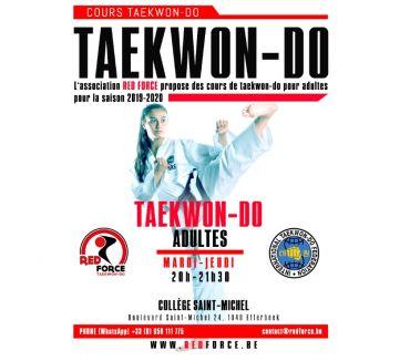 Photos Vivastreet Cours de taekwondo pour enfants et adultes