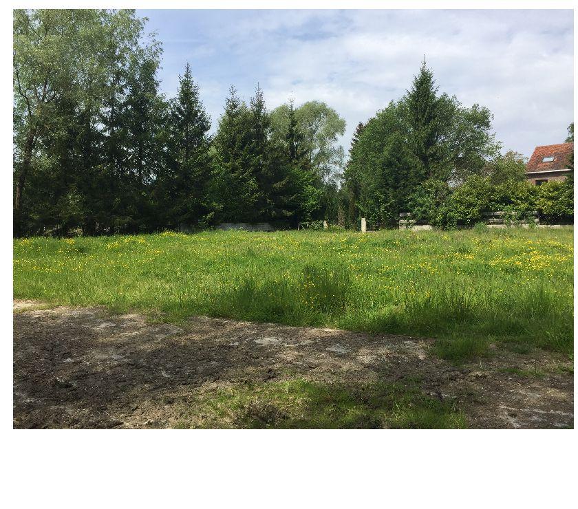 Photos Vivastreet A LOUER 8 Box Chevaux sur terrain 2000M² Grez-Doiceau s-j-w