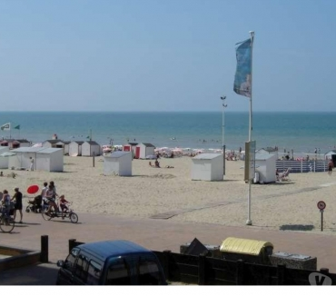 Photos Vivastreet Appart GOLDEN SAND à 12m de la plage LAST MINUTES 195eur