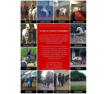 Photos Vivastreet Leçons d'équitation