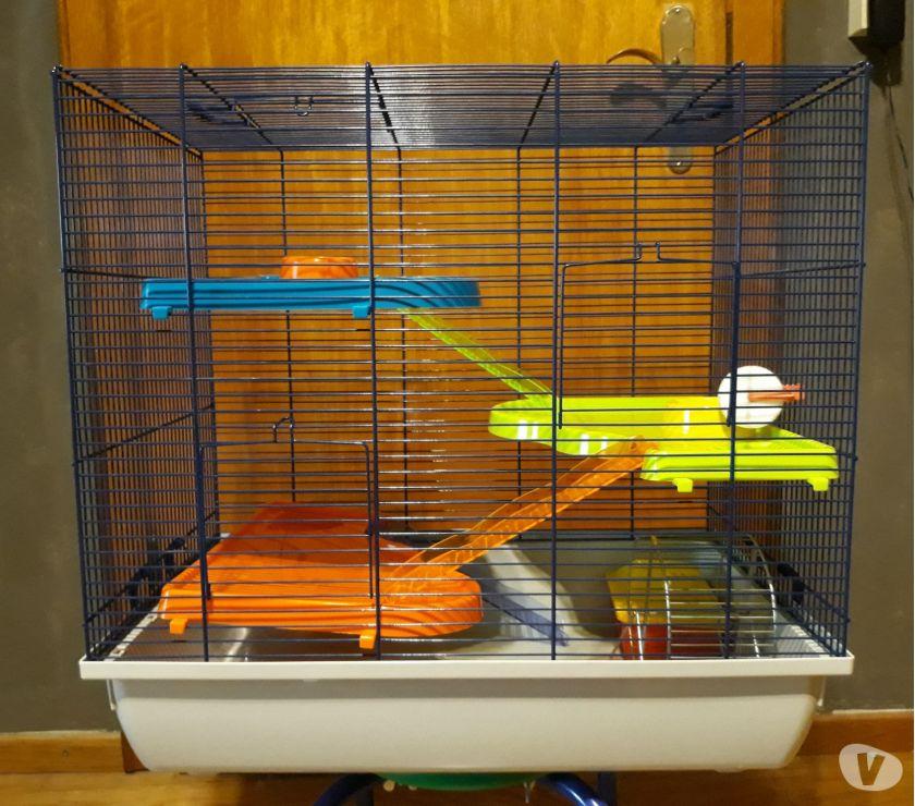 Photos Vivastreet Cage de hamster
