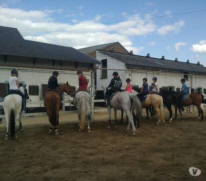 Photos Vivastreet cours et stage d'équitations