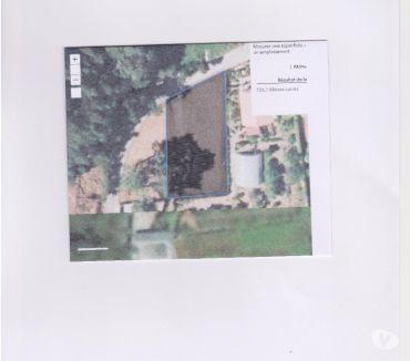 Photos Vivastreet TERRAIN CONSTRUCTIBLE 700 m2 à VILAR DE MOUROS