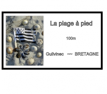 Photos Vivastreet LA PLAGE A PIED 100m Bretagne ETE 2021