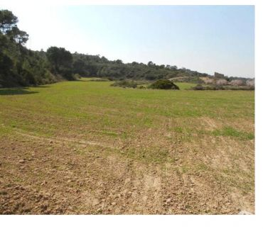Photos Vivastreet Agricultural land of 1.94 ha for sale in Mequinenza (Spain)