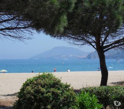 Photos Vivastreet . Argelès sur Mer Grand studio Front de Mer plage Sud à 40 m