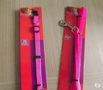 Photos Vivastreet collier + laisse chat rose