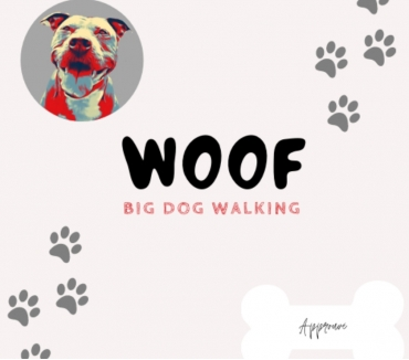 Photos Vivastreet pet sitter dog walker