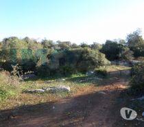 Photos Vivastreet Terrain de 15000m2 avec 200m² constructible à Olhão T-661
