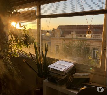 Photos Vivastreet Appartement T4 BORDEAUX