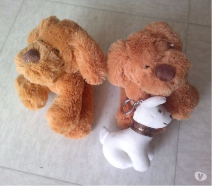Photos Vivastreet Lot de 3 peluches de chien