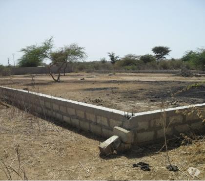 Photos Vivastreet Terrains Toubab dialao Ndayane (sur la route de Popenguine)