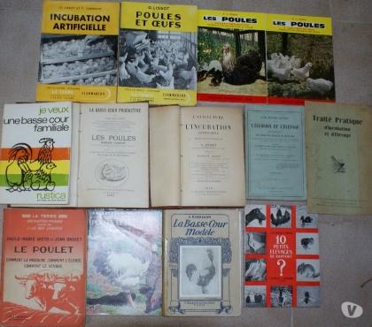 Photos Vivastreet 13 livres poules, coqs, petit élevage, aviculture incubation