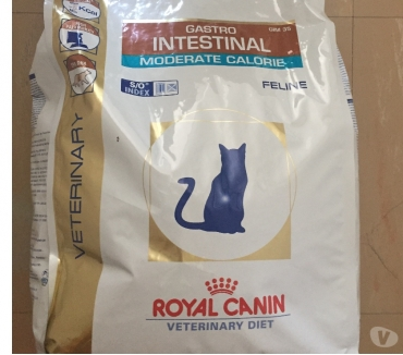 Photos Vivastreet croquette royal canin chat