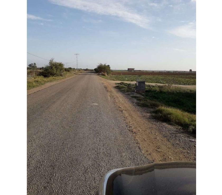 Terrain à vendre Tunisie - Photos Vivastreet Grand Terrain à KAIROUAN Nord - Guatrania .