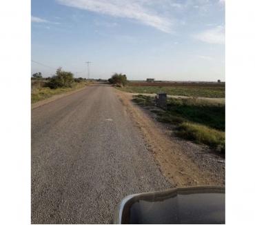 Photos Vivastreet Grand Terrain à KAIROUAN Nord - Guatrania .