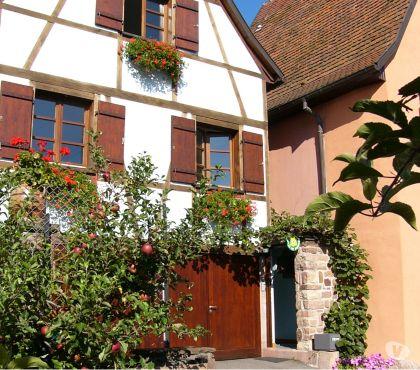 Photos Vivastreet Gite 3* en Alsace près de Colmar, Eguisheim & Kaysersberg