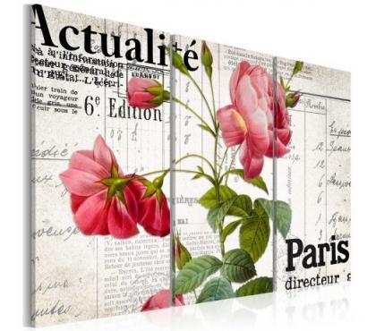 Photos Vivastreet tableau 3en1 rose actualité paris 60x40 cm
