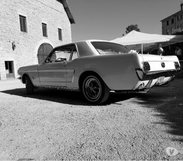 Photos Vivastreet Location mustang pour mariage