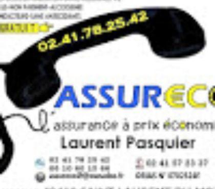 Photos Vivastreet Assurance auto,alcoolémie,malus, non paiement Tél:0241782542