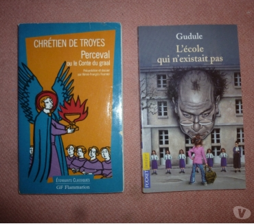 Photos Vivastreet 2 livres : GF Flammarion et Pocket junior