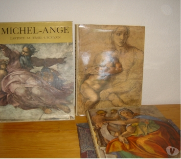 Photos Vivastreet coffret 2 tomes MICHEL ANGE