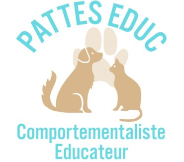 Photos Vivastreet Educateur et comportementaliste canin et félin