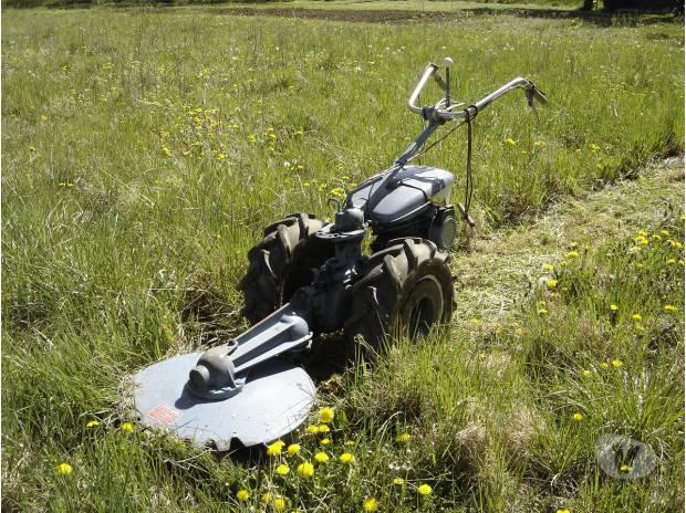 "Photos Vivastreet motoculteur staub ppx gyro roto"" recherche"""