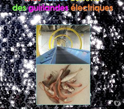 Photos Vivastreet parution de Mes veines comme des guirlandes électriques