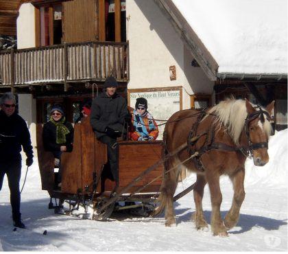 Photos Vivastreet Traîneau sur neige équestre, freins et couteaux