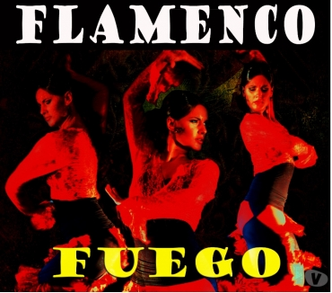 Photos Vivastreet Spectacle Flamenco Fuego
