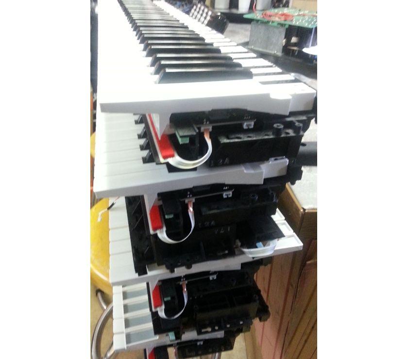 Photos Vivastreet YAMAHA PSR-S700 à 775 - claviers nus seuls
