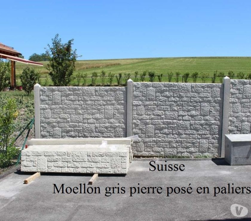 Côte-d'Or Dijon - 21000 - Photos Vivastreet Dalles de cloture strucurées en surplus. Fin de chantier.