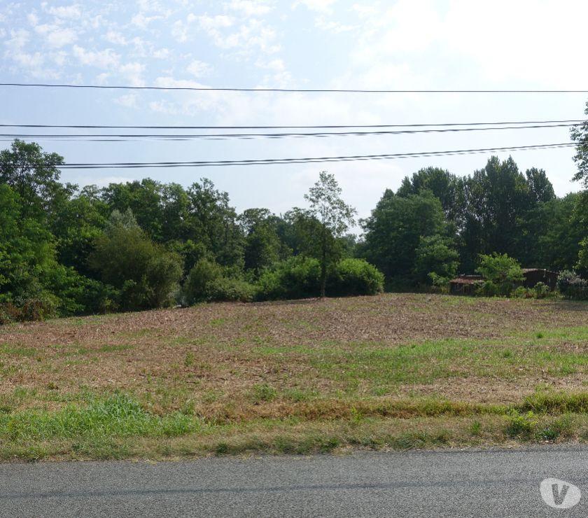 Photos Vivastreet Terrain 1 hectare 5 avec CU