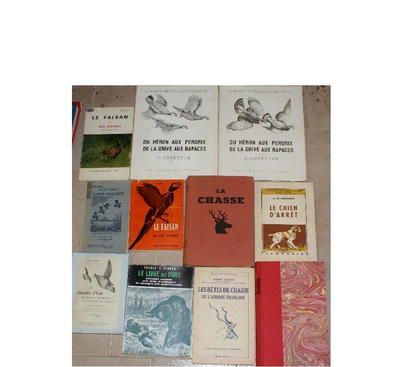 Photos Vivastreet 11 livres chasse et chiens de chasse