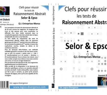 Photos Vivastreet Préparation Epso-Orseu-Selor-QI-Mensa-entreprise