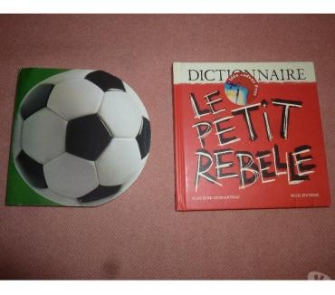 Photos Vivastreet Tous fous de foot - Le petit rebelle