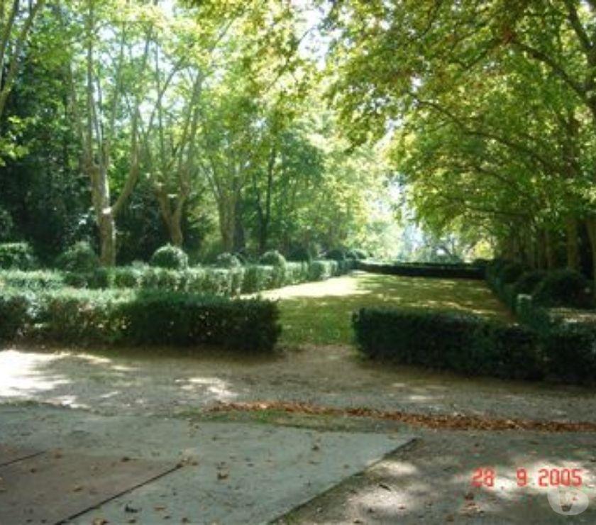 location saisonniere Alpes-de-Haute-Provence Greoux les Bains - 04800 - Photos Vivastreet studio à louer