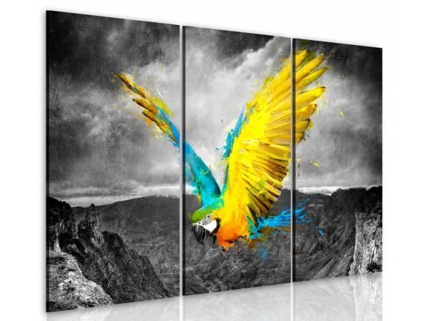 tableau 3 en 1 perroquet volant de couleurs vive 120 x 80 cm brax 47310 d coration art. Black Bedroom Furniture Sets. Home Design Ideas