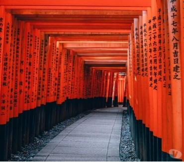 Photos Vivastreet Cours de japonais enfants et adultes tous niveaux