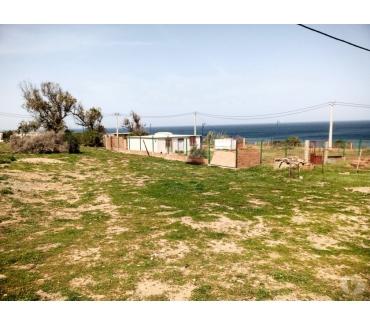 Photos Vivastreet Vend très beaux terrain au bord de mer S 3333m² en Algérie