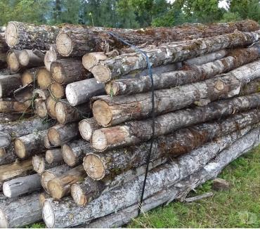 Photos Vivastreet Bois de chauffage en rondins