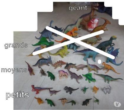 Photos Vivastreet collection de dinosaures et animaux - zoe
