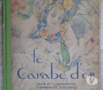 """Livre """"Le Carabe d'Or"""" d'Emmanuel Cocard"""