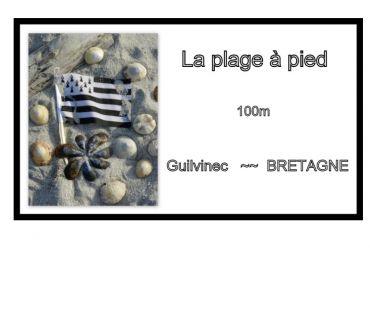 Photos Vivastreet LA PLAGE A PIED 100m - Bretagne - ETE 2020