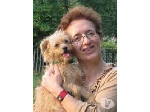 Photos Vivastreet GARDE chien et VISITE de chat au domicile du propiétaire