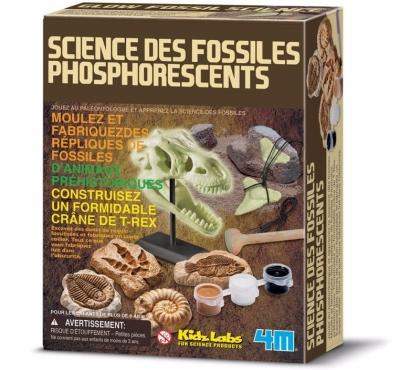Photos Vivastreet Sciences des fossiles phosphorescents 4 M Kids Labs