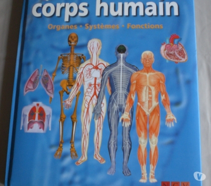 Photos Vivastreet Le corps humain